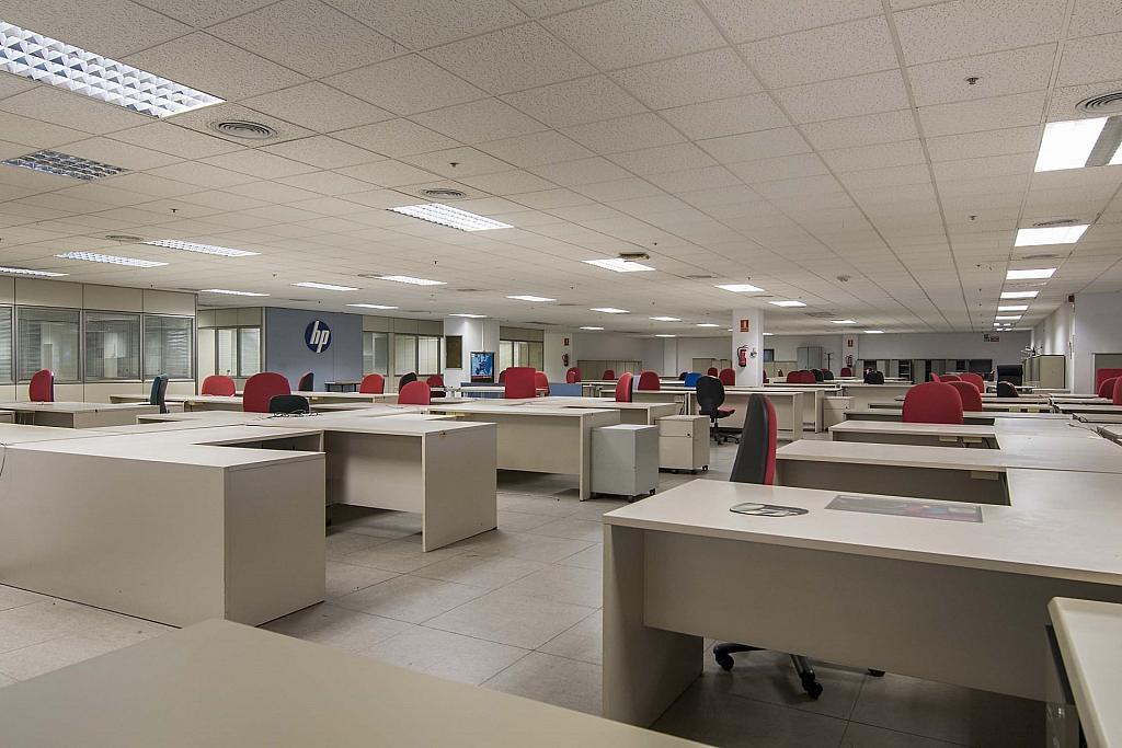 DSC_3746 - Oficina en alquiler en calle Maresme, Almeda en Cornellà de Llobregat - 329737876
