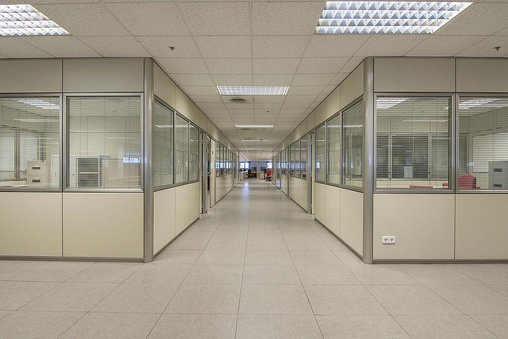 DSC_3751 - Oficina en alquiler en calle Maresme, Almeda en Cornellà de Llobregat - 329737879