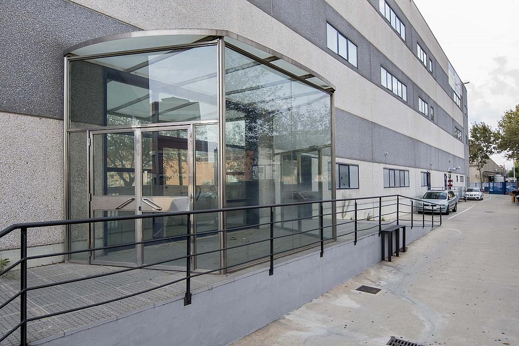 DSC_3821 - Oficina en alquiler en calle Maresme, Almeda en Cornellà de Llobregat - 358676336