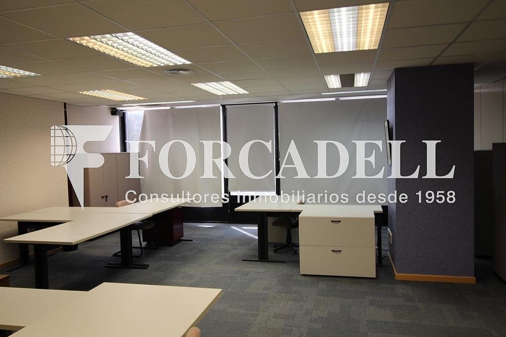 IMG_0733 - Oficina en alquiler en calle De Les Corts, Sant Ramon-La Maternitat en Barcelona - 263446776