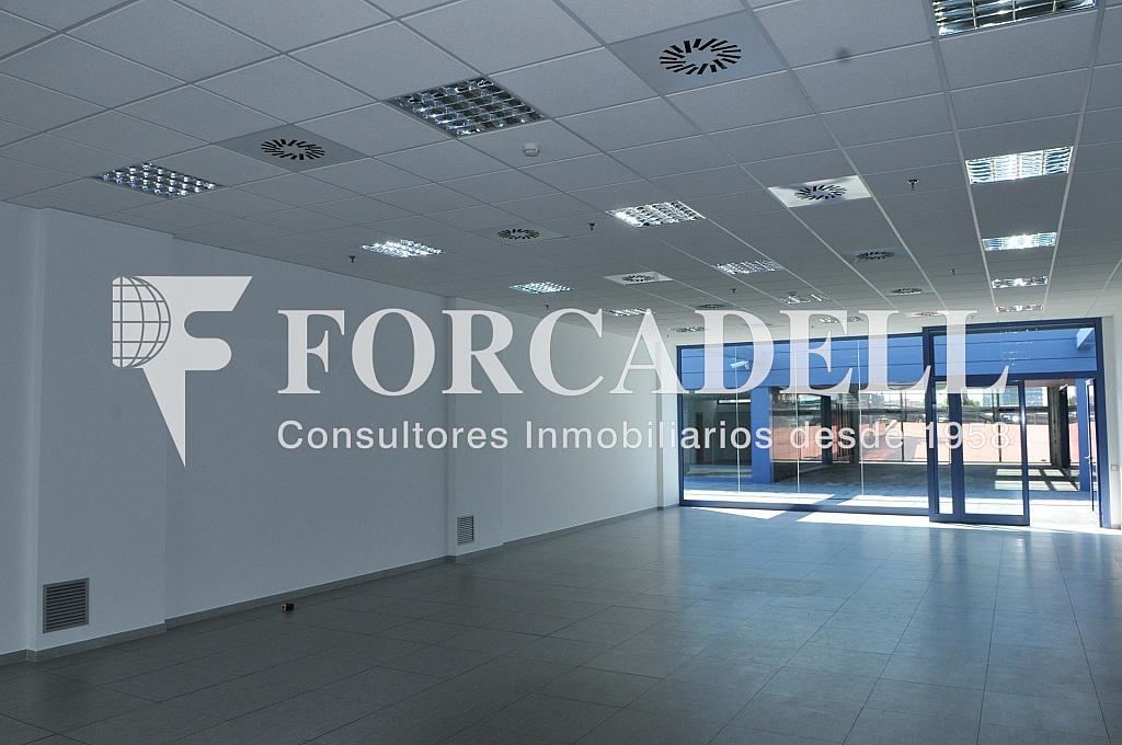 2011-06-15 10.48.13 - Oficina en alquiler en calle Constitució, Sant Just Desvern - 263446917