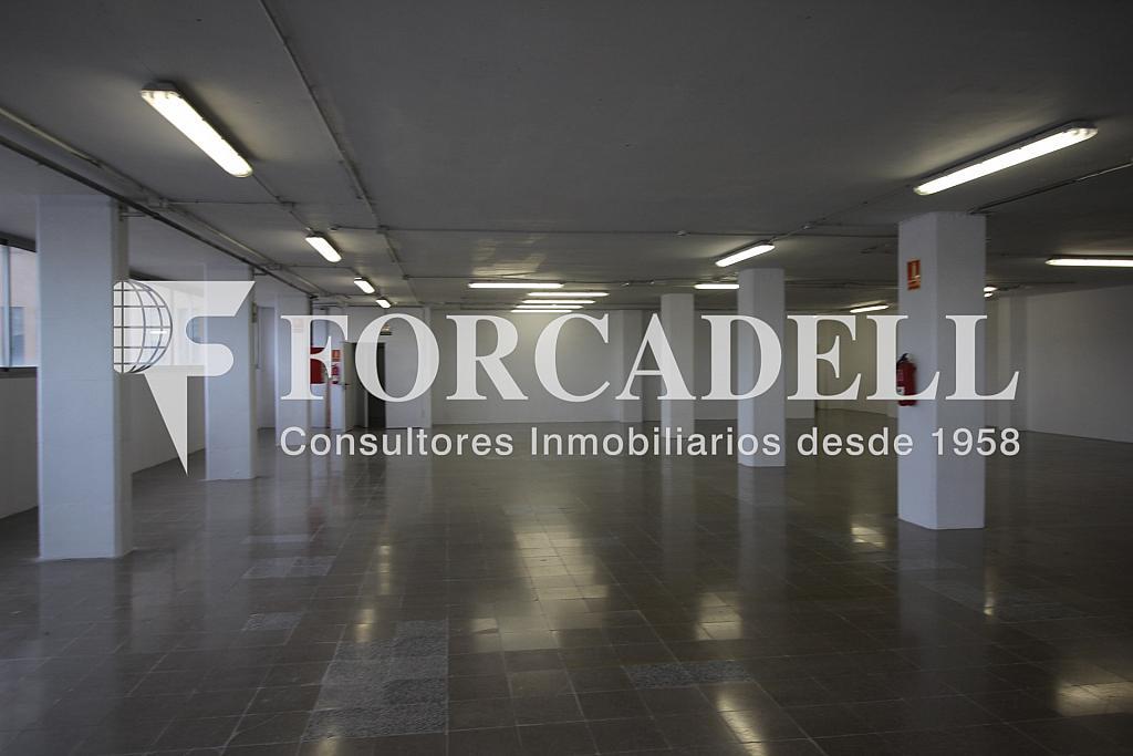 IMG_3694 - Oficina en alquiler en calle Crom, Bellvitge en Hospitalet de Llobregat, L´ - 263447286