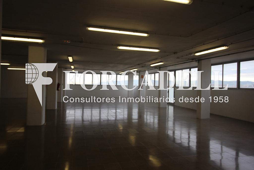 IMG_3693 - Oficina en alquiler en calle Crom, Bellvitge en Hospitalet de Llobregat, L´ - 263447289