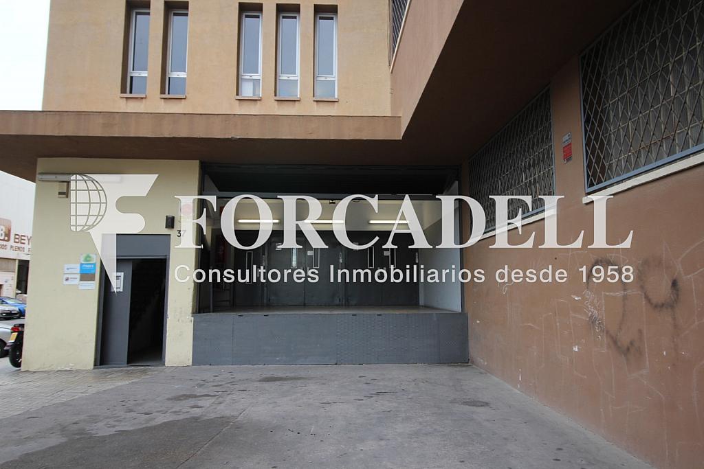 IMG_3690 - Oficina en alquiler en calle Crom, Bellvitge en Hospitalet de Llobregat, L´ - 263447292