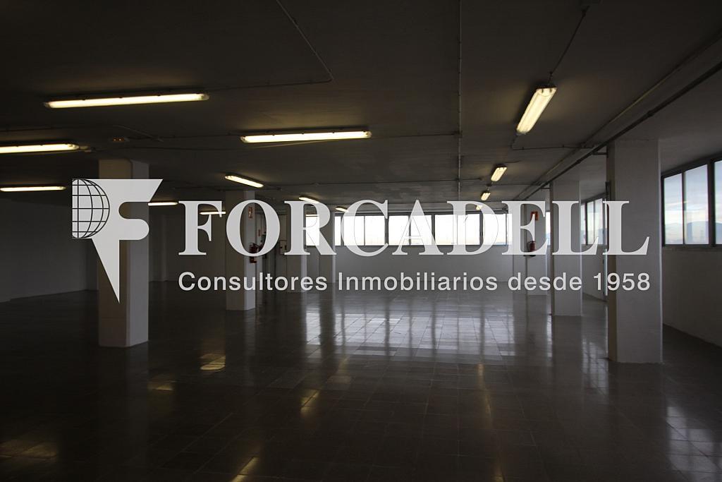 IMG_3691 - Oficina en alquiler en calle Crom, Bellvitge en Hospitalet de Llobregat, L´ - 263447295