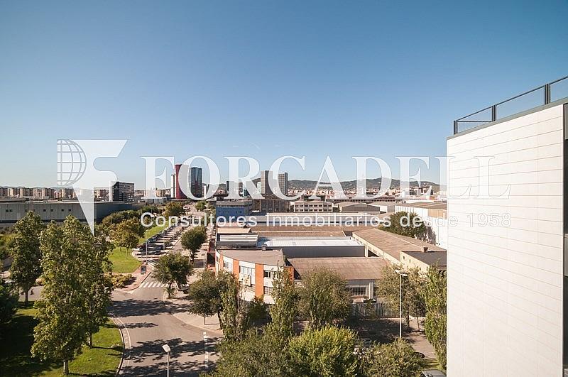 DSC_1544 - Oficina en alquiler en calle Pablo Iglesias, Gran Via LH en Hospitalet de Llobregat, L´ - 263447781