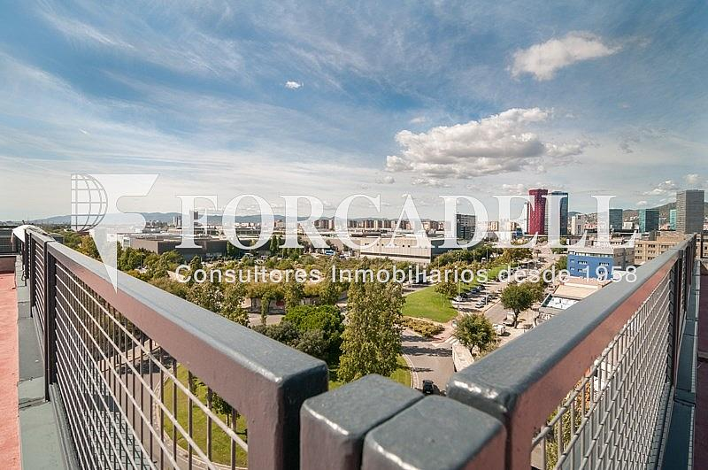 _DSC3822 - Oficina en alquiler en calle Pablo Iglesias, Gran Via LH en Hospitalet de Llobregat, L´ - 263447784