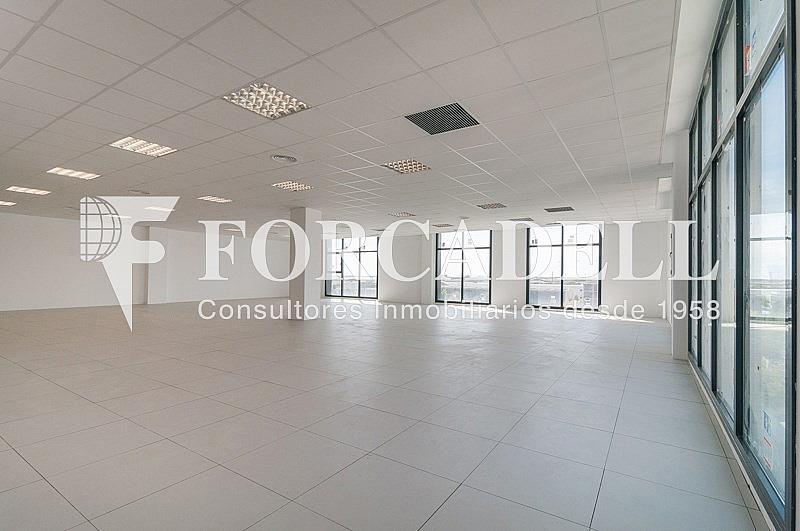 _DSC3813 - Oficina en alquiler en calle Pablo Iglesias, Gran Via LH en Hospitalet de Llobregat, L´ - 263447790
