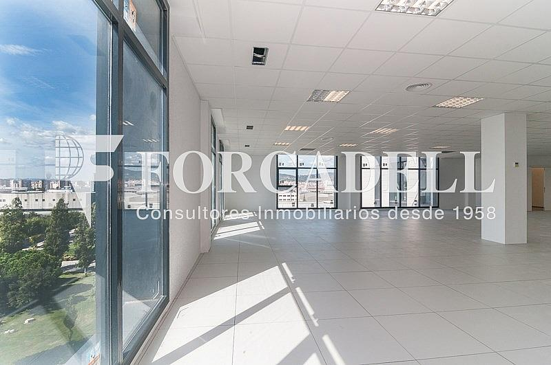 _DSC3782 - Oficina en alquiler en calle Pablo Iglesias, Gran Via LH en Hospitalet de Llobregat, L´ - 263447805