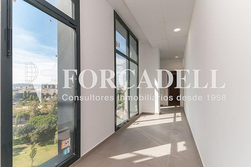 _DSC3798 - Oficina en alquiler en calle Pablo Iglesias, Gran Via LH en Hospitalet de Llobregat, L´ - 263447820