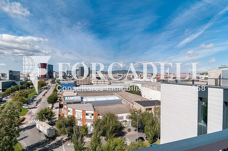 _DSC3819 - Oficina en alquiler en calle Pablo Iglesias, Gran Via LH en Hospitalet de Llobregat, L´ - 263447853