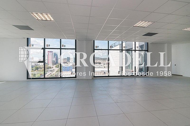 _DSC3794 - Oficina en alquiler en calle Pablo Iglesias, Gran Via LH en Hospitalet de Llobregat, L´ - 263447883
