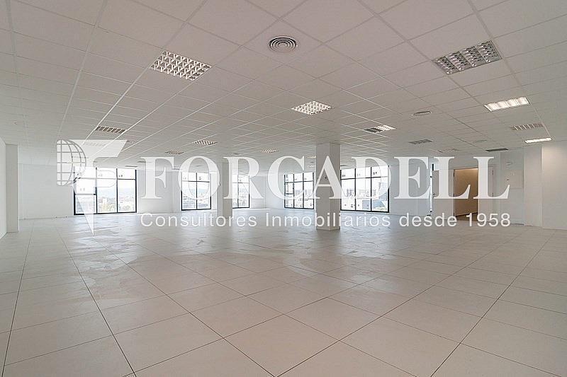 _DSC3775 - Oficina en alquiler en calle Pablo Iglesias, Gran Via LH en Hospitalet de Llobregat, L´ - 263447898