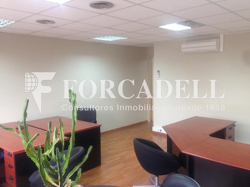 IMG_5417 - Oficina en alquiler en calle Comte Borrell, Eixample esquerra en Barcelona - 263448327