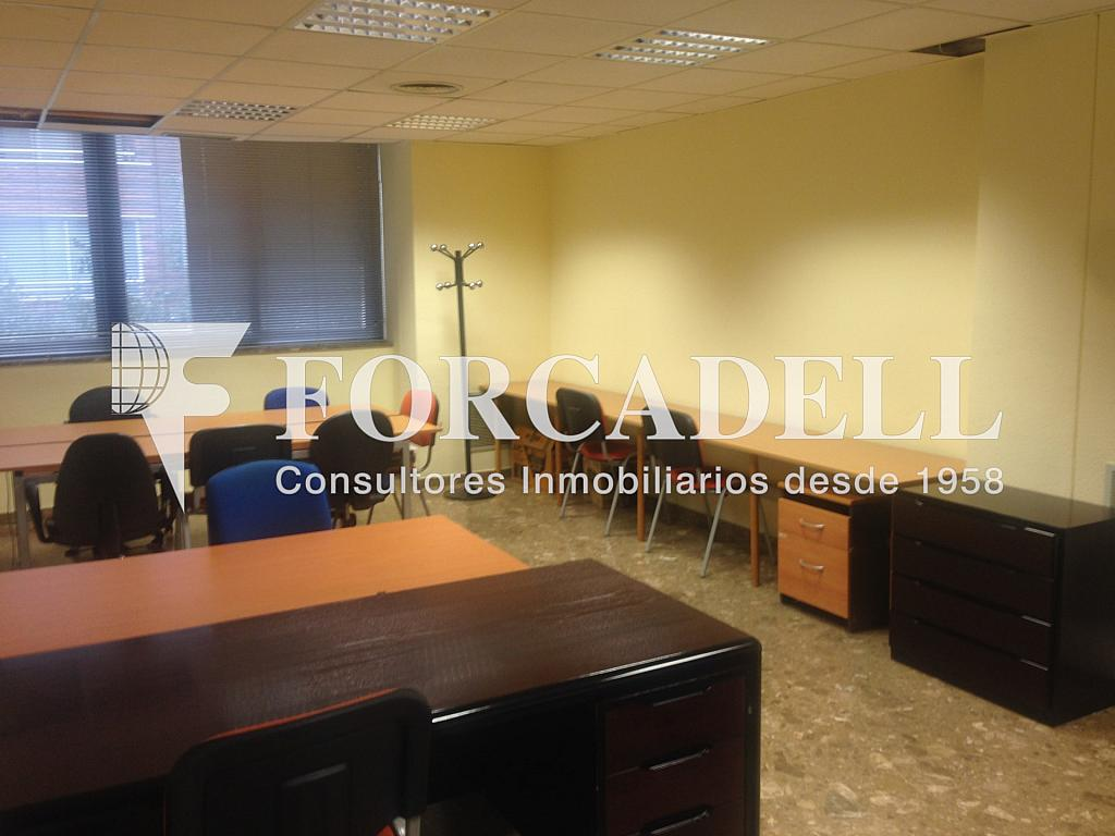 IMG_5423 - Oficina en alquiler en calle Comte Borrell, Eixample esquerra en Barcelona - 263448336