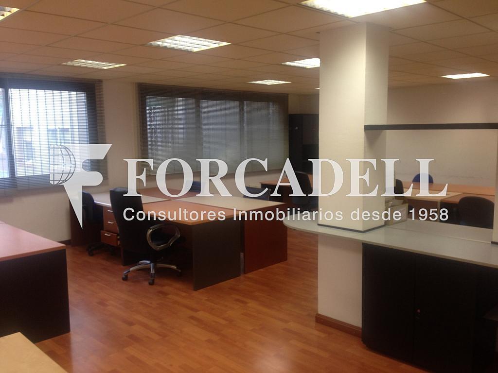 IMG_5414 - Oficina en alquiler en calle Comte Borrell, Eixample esquerra en Barcelona - 263424966