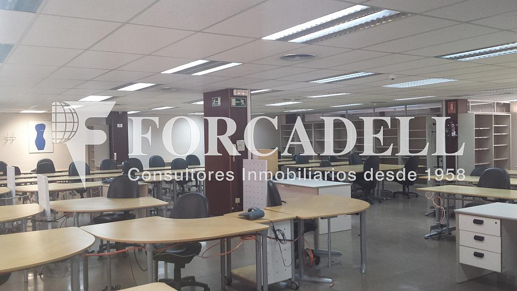 20140319_135919 - Oficina en alquiler en calle Numancia, Les corts en Barcelona - 263430060