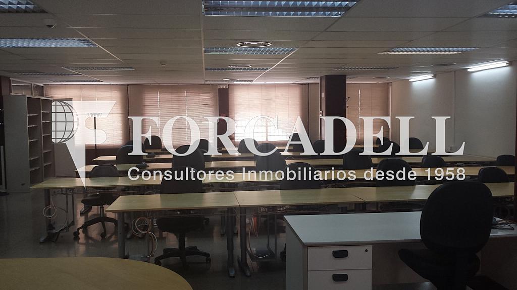 20140319_140015 - Oficina en alquiler en calle Numancia, Les corts en Barcelona - 263430063