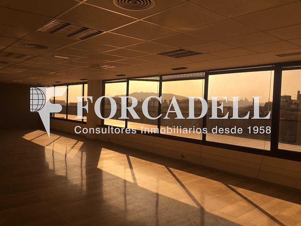 IMG_2421 - Oficina en alquiler en calle Gracia, Eixample dreta en Barcelona - 263450436