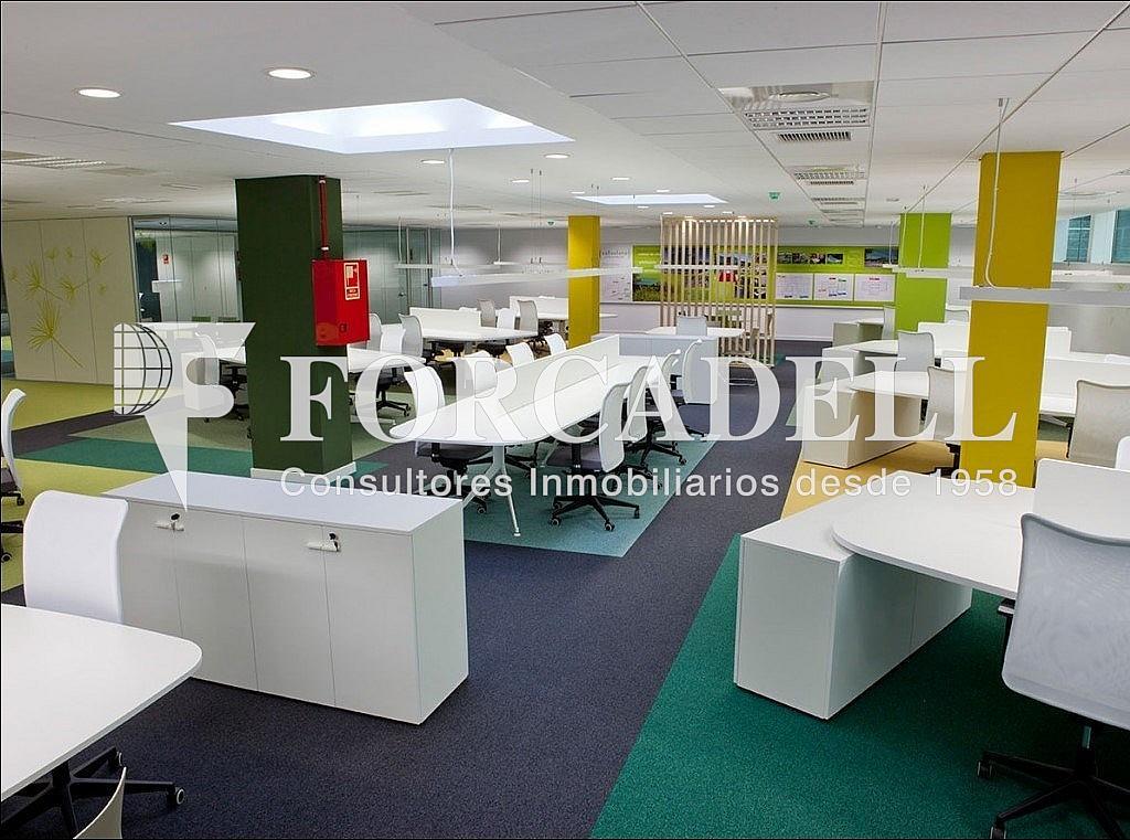 4 - Oficina en alquiler en parque De Can Camps Vallsolana Business, Sant Cugat del Vallès - 263449563