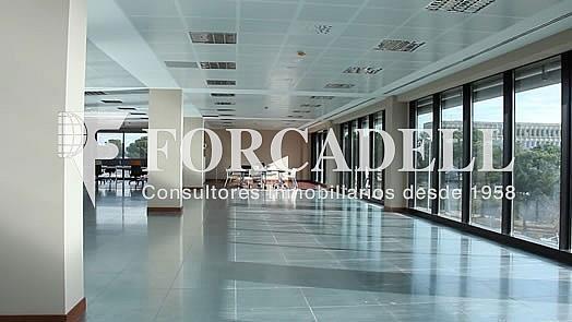Catalana_Parc_Interior_Oficinas_Sin_mesas - Oficina en alquiler en calle Jesús Serra Santamans, Sant Cugat del Vallès - 286365372