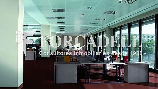 Catalana_Parc_Interior_Oficinas - Oficina en alquiler en calle Jesús Serra Santamans, Sant Cugat del Vallès - 286365375