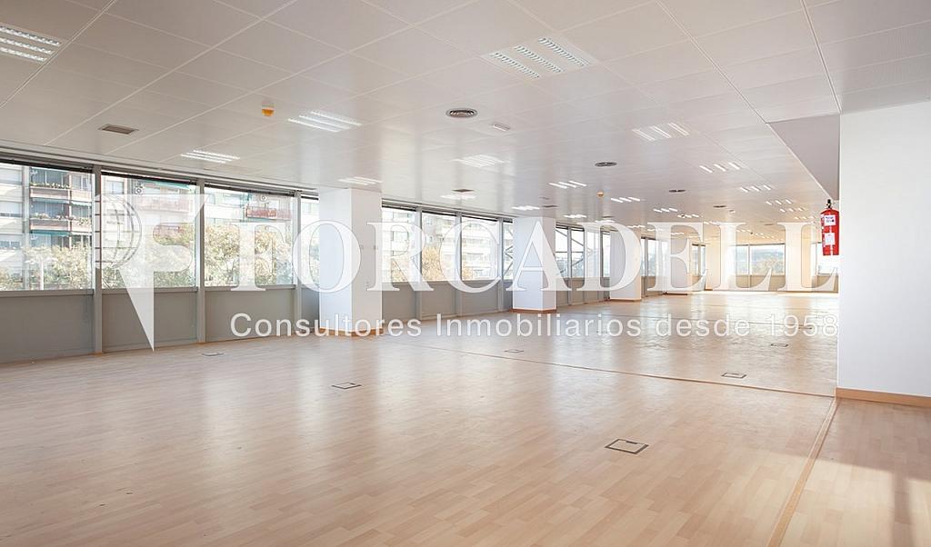 0461 6 - Oficina en alquiler en calle Tarragona, Hostafrancs en Barcelona - 324110034