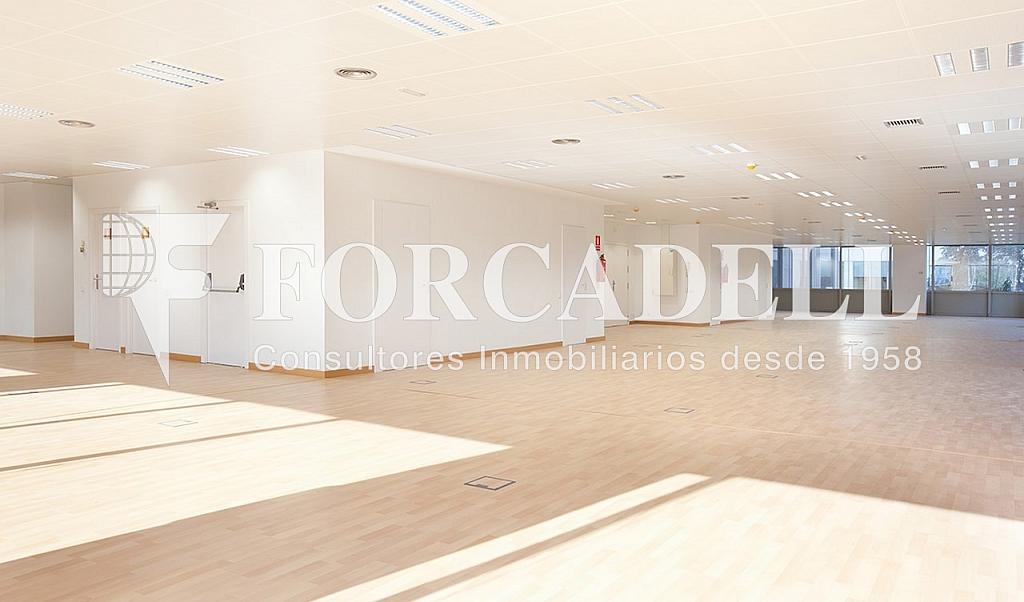 0461 07 - Oficina en alquiler en calle Tarragona, Hostafrancs en Barcelona - 324110037