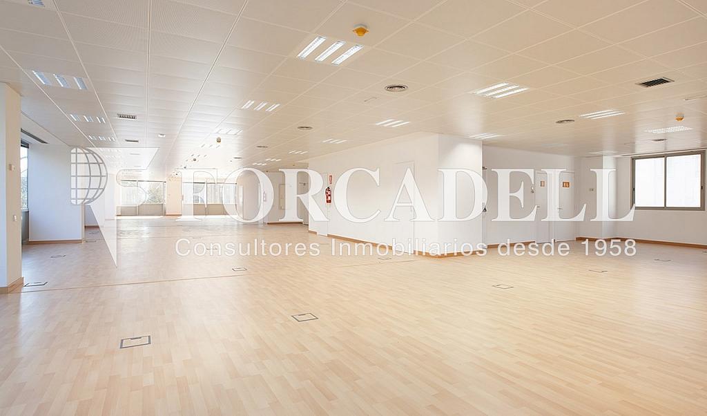 0461 05 - Oficina en alquiler en calle Tarragona, Hostafrancs en Barcelona - 324110040