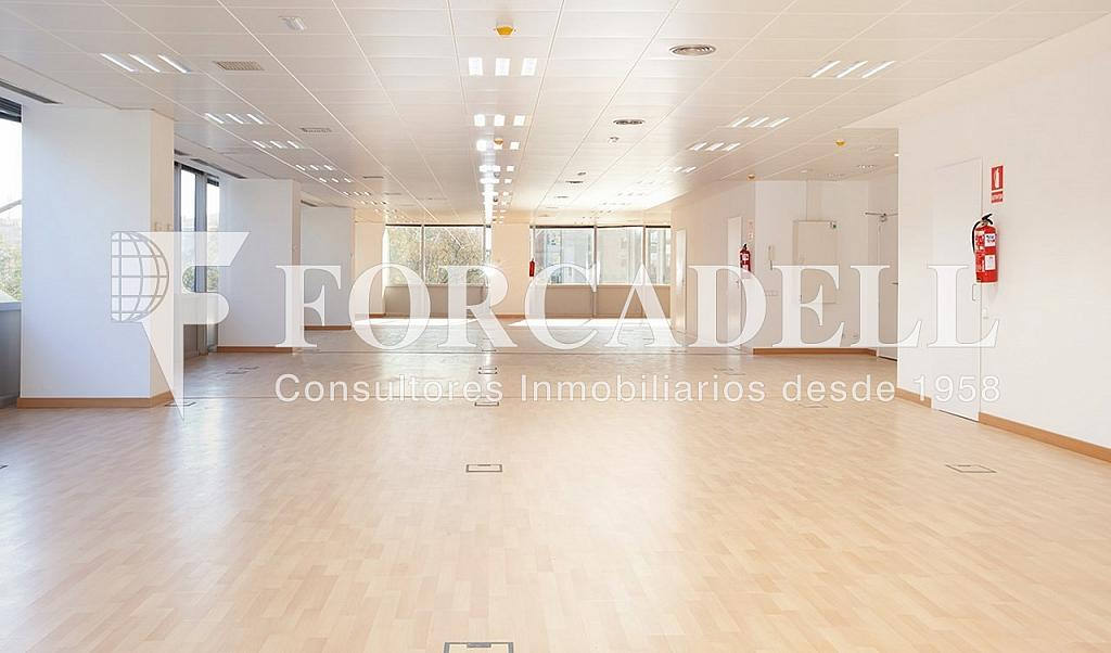 0461 06 - Oficina en alquiler en calle Tarragona, Hostafrancs en Barcelona - 324110043