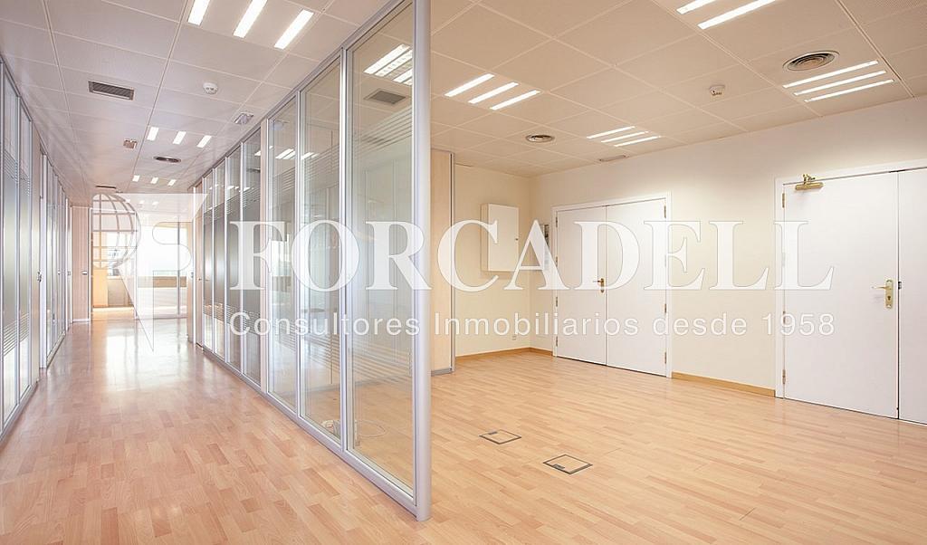 0542 07 - Oficina en alquiler en calle Tarragona, Hostafrancs en Barcelona - 324110046