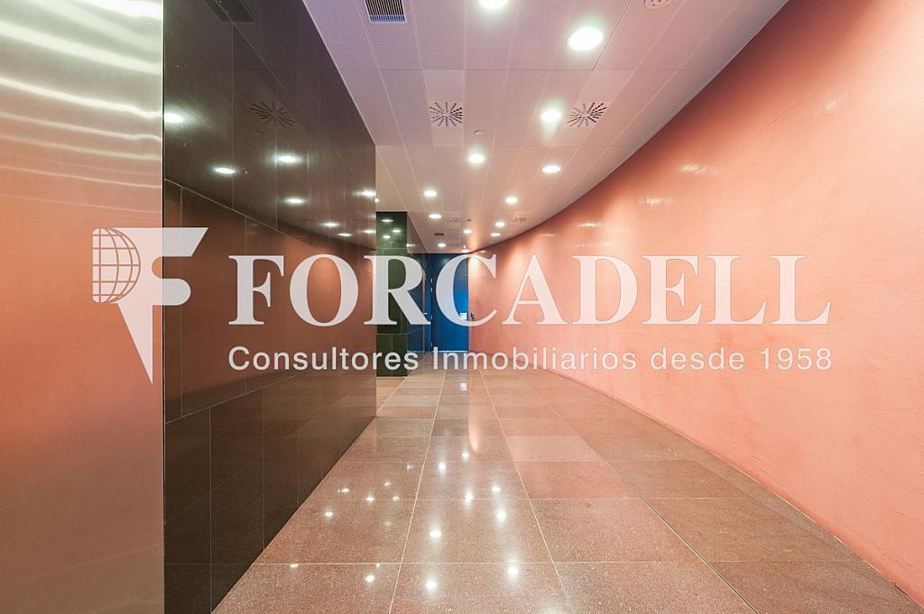 _DSC5648 - Oficina en alquiler en calle Europa Torre Realia, El Gornal en Hospitalet de Llobregat, L´ - 337409129