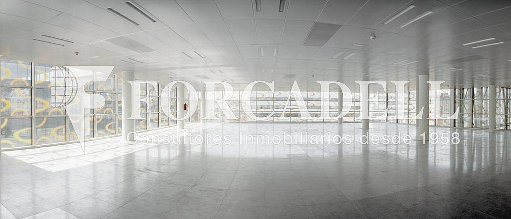 Foto 1 - Oficina en alquiler en parque De la Pau Wtc Almeda Edificio, Cornellà de Llobregat - 263446863