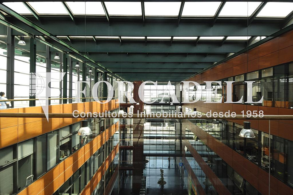 _DSC8147 - Oficina en alquiler en calle Eol, Prat de Llobregat, El - 263452290