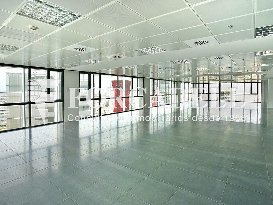 6 - Oficina en alquiler en calle Europa, Centre en Hospitalet de Llobregat, L´ - 263452938