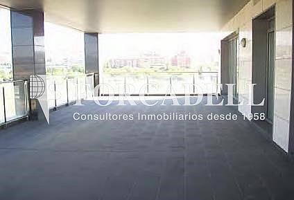 5 - Oficina en alquiler en edificio Barcelona Brasol, Sant Joan Despí - 263453523