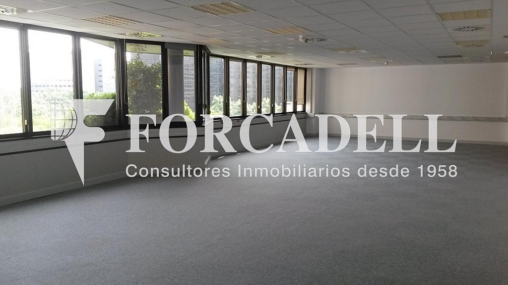 20150514_154223 - Oficina en alquiler en calle De la Caravel·la la Niña, Les corts en Barcelona - 263453880