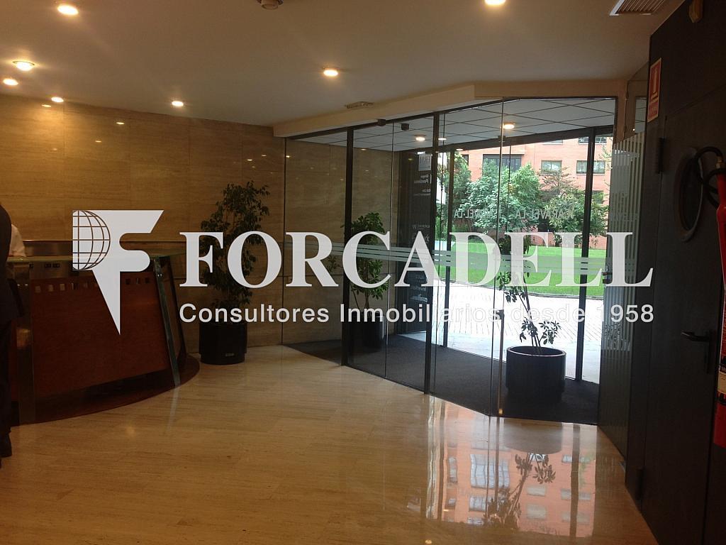 IMG_9721 - Oficina en alquiler en calle De la Caravel·la la Niña, Les corts en Barcelona - 263453964
