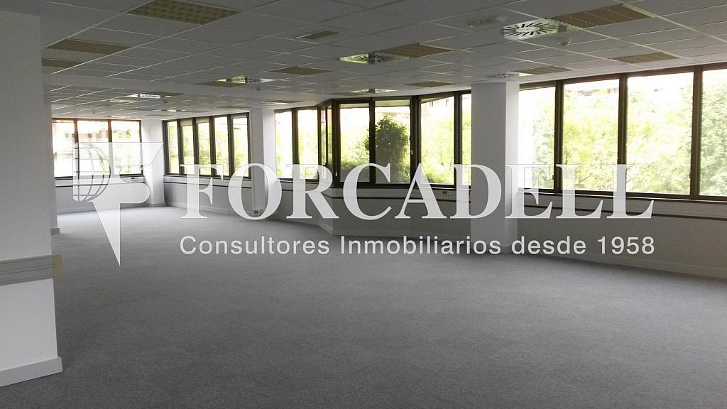 20150514_154259 - Oficina en alquiler en calle De la Caravel·la la Niña, Les corts en Barcelona - 263453970