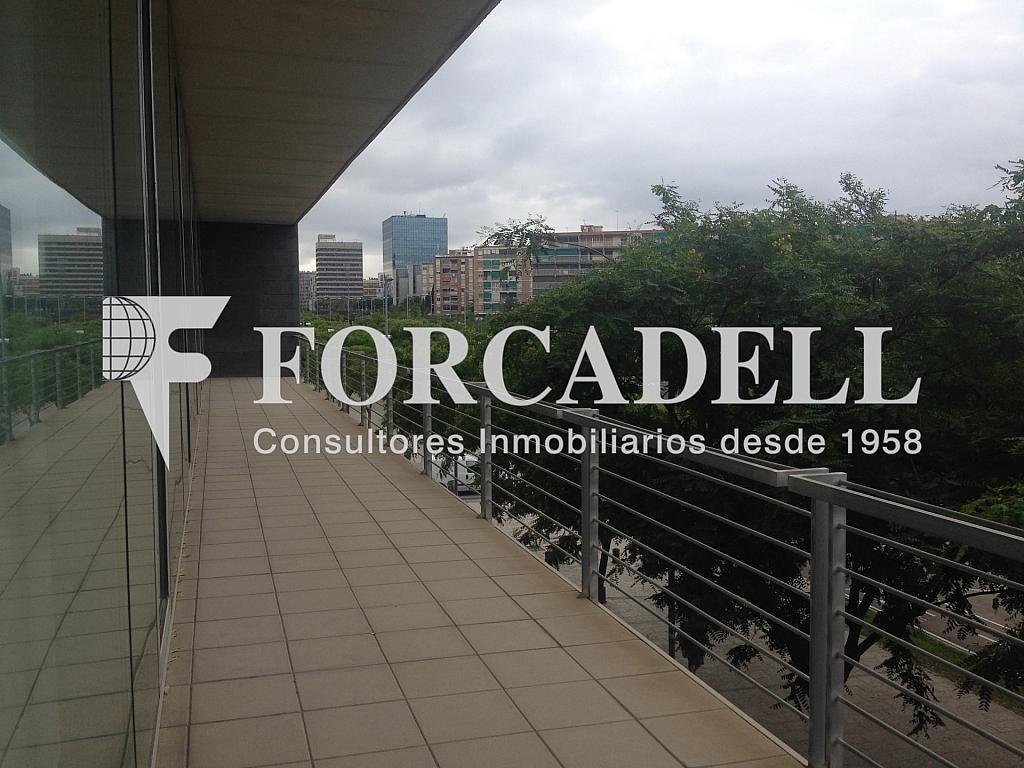 IMG_9730 - Oficina en alquiler en calle Gran Via, Santa Eulàlia en Hospitalet de Llobregat, L´ - 263454003