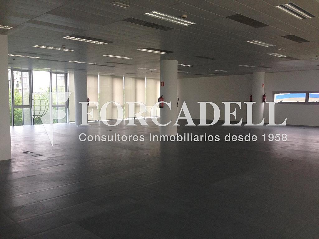 IMG_9732 - Oficina en alquiler en calle Gran Via, Santa Eulàlia en Hospitalet de Llobregat, L´ - 263454009