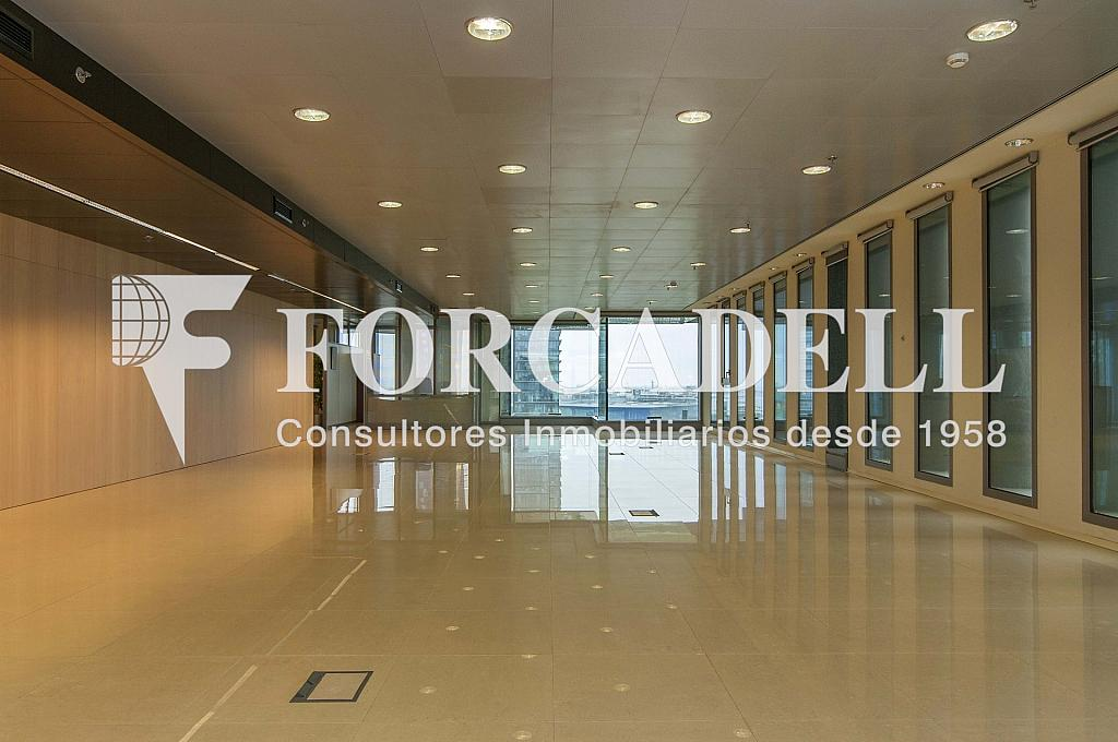 _DSC3652 - Oficina en alquiler en calle Europa, El Gornal en Hospitalet de Llobregat, L´ - 278703683
