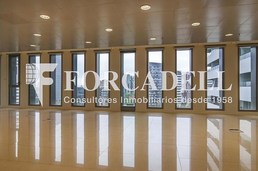 _DSC3656 - Oficina en alquiler en calle Europa, Gran Via LH en Hospitalet de Llobregat, L´ - 278703704