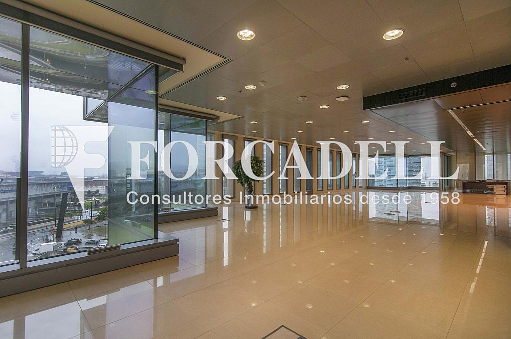 _DSC3645 - Oficina en alquiler en calle Europa, Gran Via LH en Hospitalet de Llobregat, L´ - 278703707