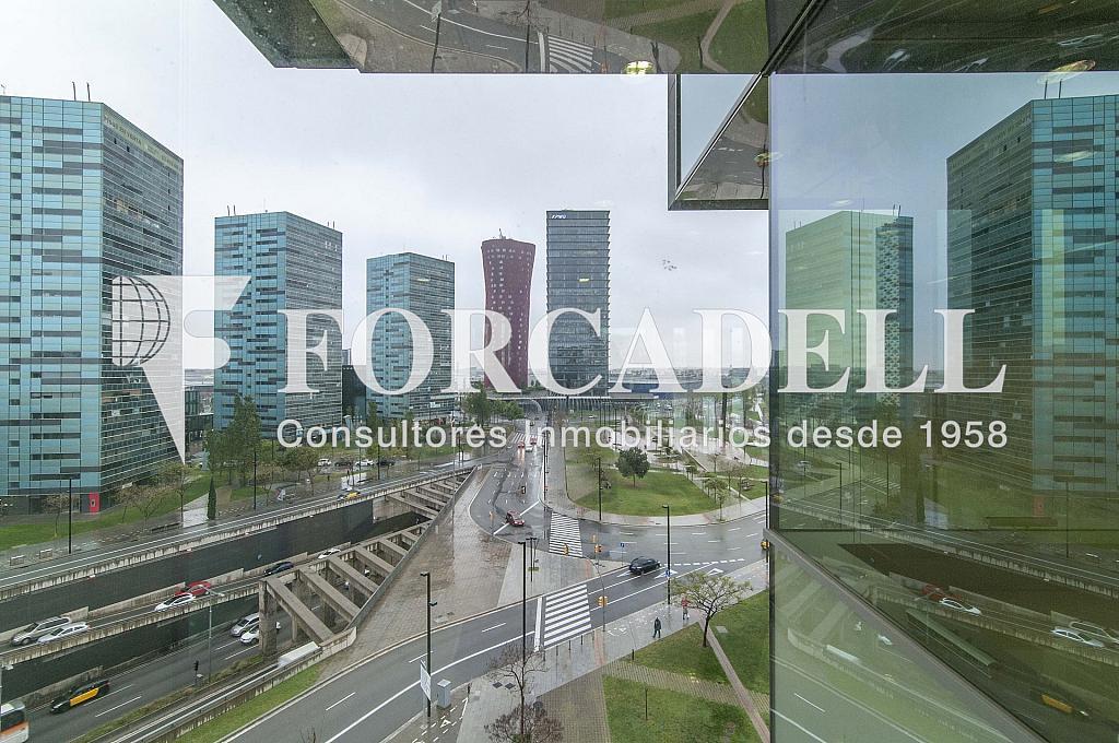 _DSC3636 - Oficina en alquiler en calle Europa, Gran Via LH en Hospitalet de Llobregat, L´ - 278703719