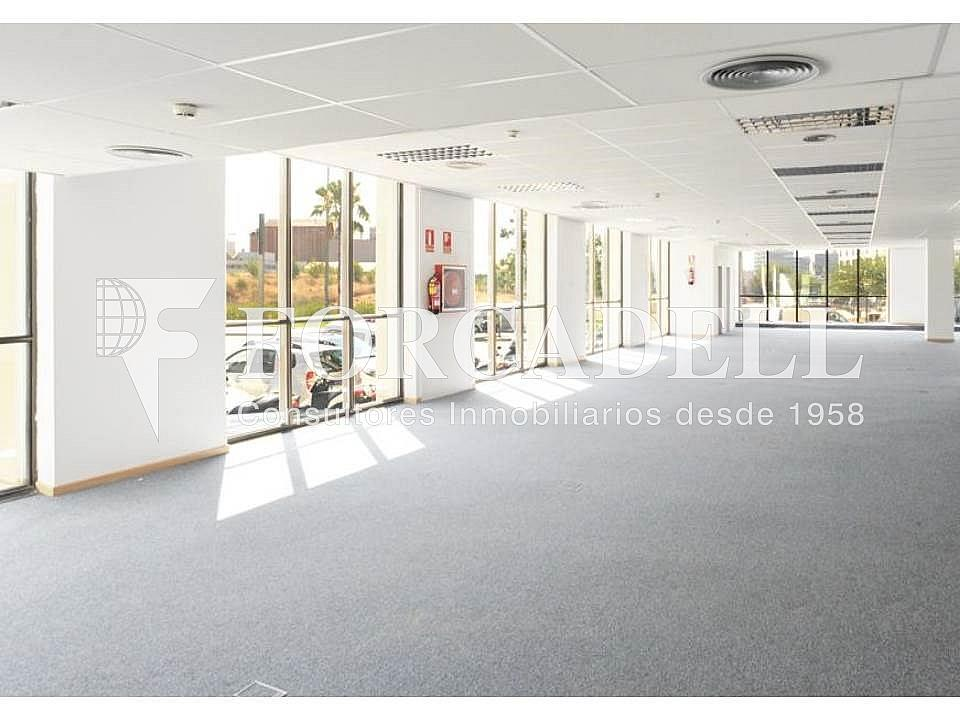 Diapositiva4 - Oficina en alquiler en calle De la Constitució, Sant Just Desvern - 397664595