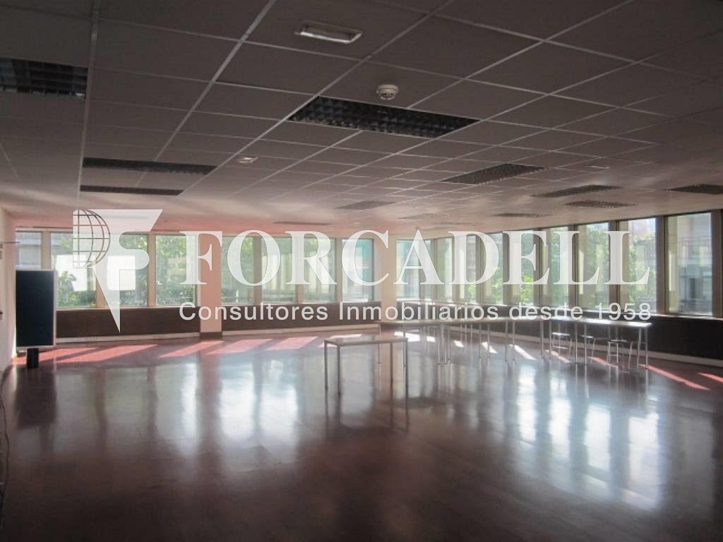IMG_6660 - Oficina en alquiler en calle Entença, Eixample esquerra en Barcelona - 263454438