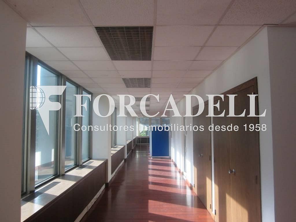 IMG_6658 - Oficina en alquiler en calle Entença, Eixample esquerra en Barcelona - 263454444