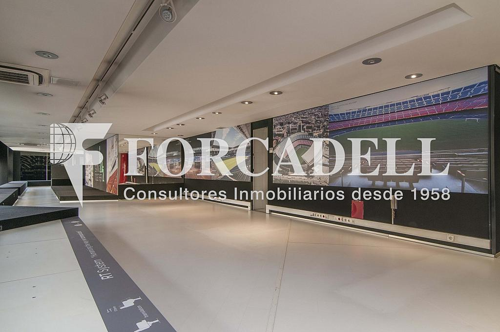 _DSC9915reto - Local comercial en alquiler en Eixample dreta en Barcelona - 266463686