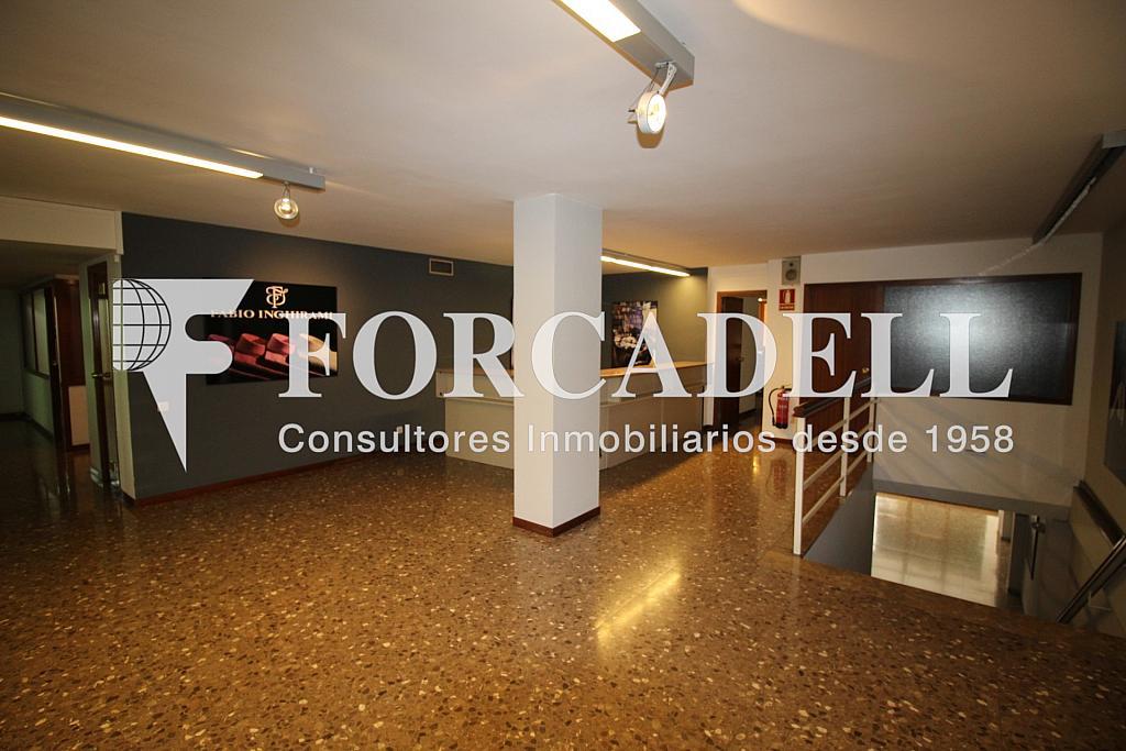 IMG_0865 - Local comercial en alquiler en Sants en Barcelona - 281186414